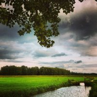 strumień i łąka
